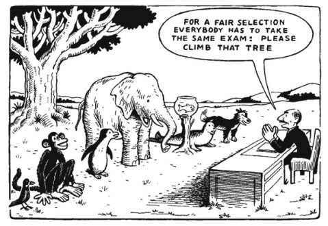 equality_cartoon