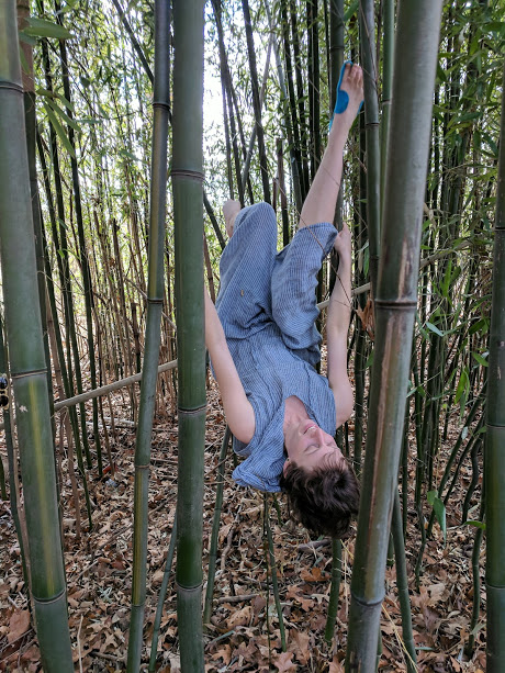 Ingrid inverted in bamboo.jpg
