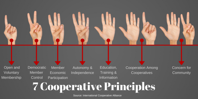 7-Cooperative-Principles-1-1ukrmu5