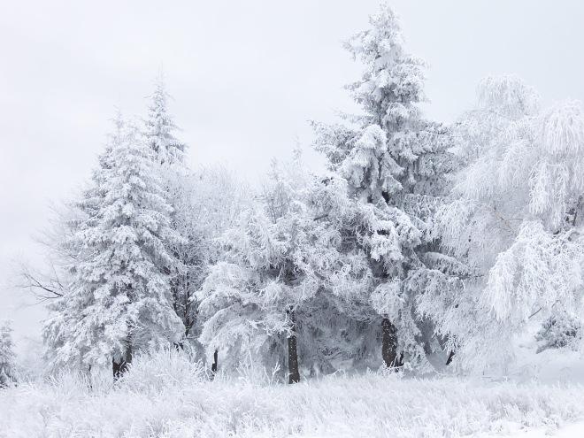 Snow_Scene_at_Shipka_Pass_1